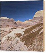 Blue Mesa Landscape Wood Print