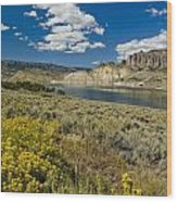 Blue Mesa Reservoir - V Wood Print