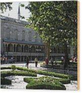 Blue Mosque I - Istanbul Wood Print