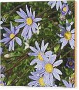 Blue Mums Wood Print