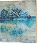Blue On Blue Wood Print by Ann Powell