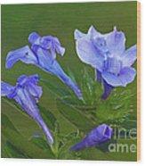 Blue On Green Wood Print