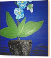 Blue Orchid 2 Wood Print by Pretchill Smith