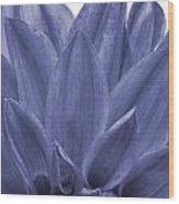 Blue Petals Wood Print by Al Hurley