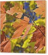 Blue Ridge Autumn Leaves 1.0 Wood Print
