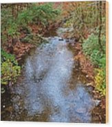 Blue Ridge Mountain Stream Too Wood Print