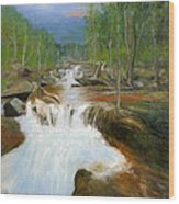 Blue Ridge Runoff Wood Print by Max Mckenzie