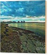Blue Shores Wood Print