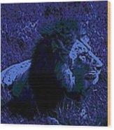 Blue Simba Wood Print