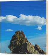 Blue Skies Wood Print
