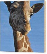 Blue Sky Giraffe Wood Print