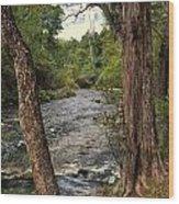 Blue Spring Branch Wood Print