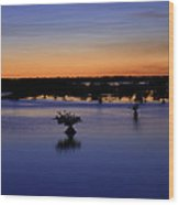Blue Sunset Mangroves Wood Print