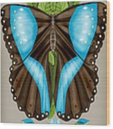 Blue Tiled Butterfly Wood Print