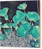 Blue Vision Wood Print