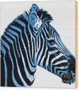 Blue Zebra Art Wood Print by Rebecca Margraf