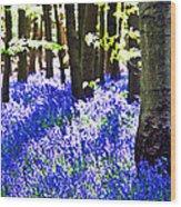 Bluebell Woods Wood Print