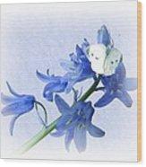 Bluebells And Butterflies Wood Print