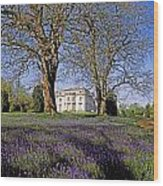 Bluebells In The Pleasure Grounds, Emo Wood Print