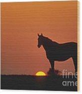Bluegrass Sunset - Fs000285 Wood Print