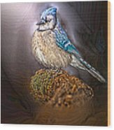 Bluejay In Spotlight Wood Print