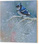 Bluejay In Winter Wood Print