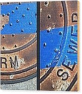 Bluer Sewer Diptych Wood Print