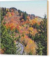 Blueridge Parkway View Near Hwy 215 Wood Print