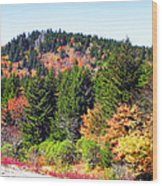 Blueridge Parkway View Near Mm 423 Wood Print