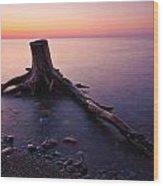 Bluffs Beach Stump Wood Print