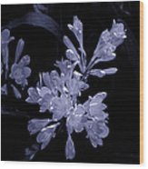 Bluish Gleaming Radiant Wood Print