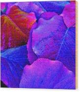 Bluish Purple And Pink Leaves Wood Print