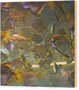 Blurred Image Of Fish Swimming In An Wood Print