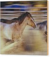 Blurred View Of Horses Running Through Wood Print