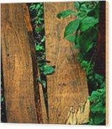 Board Meeting Wood Print