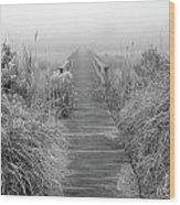 Boardwalk In Quogue Wildlife Preserve Wood Print