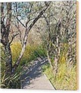 Boardwalk To The Birds Wood Print