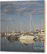 Harbor Cams Wood Print