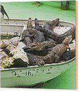Boat Full Of Alligators  Wood Print