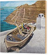 Boat On A Roof Wood Print
