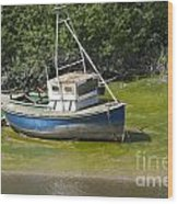 Boat On Banks Of Dee Wood Print