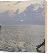 Boats Coming To A Rest For The Day At Sunset In The Lakshadweep Islands Wood Print