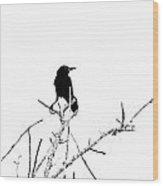 Boattail Grackle Wood Print