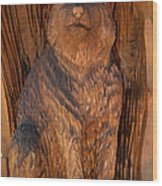 Bobcat Reflections Wood Print