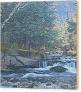 Bog Brook Wood Print