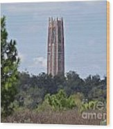 Bok Tower Wood Print