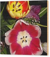 Bold Color Flowers Wood Print by Jose Lopez