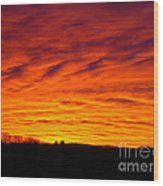 Bold Sunset Wood Print