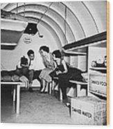 Bomb Shelter, 1955 Wood Print