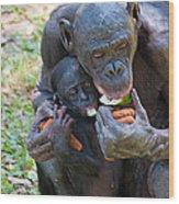 Bonobo 3 Wood Print